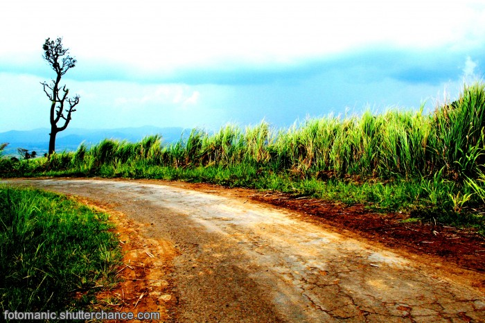 photoblog image the red road to isarog